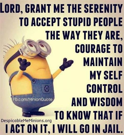 Serenity Prayer Meme - no such thing as a safe group page 2