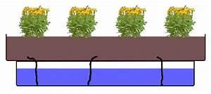 Bewässerungssystem Balkon Selber Bauen : bew sserungssystem selber bauen part 1 balkon oasebalkon oase ~ Whattoseeinmadrid.com Haus und Dekorationen