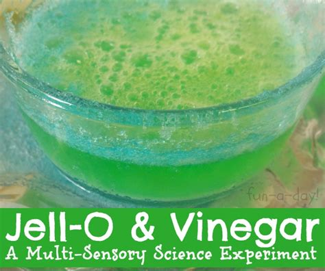 a multi sensory experiment with jell o amp vinegar 602 | 2013 03 27 15 56 23 422 2 2