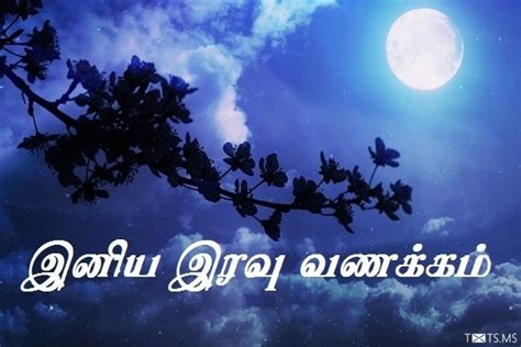 tamil good night sms wishes images  facebook