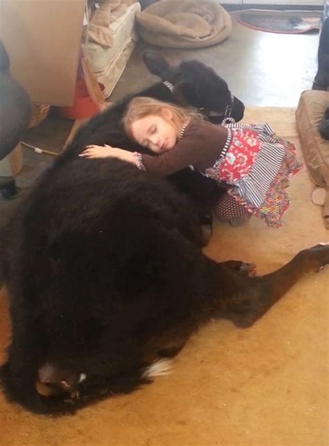 year  breanna sneak  cuddly baby    home
