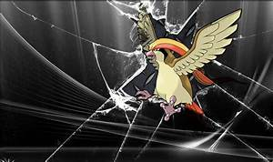 Pidgeot wallpaper HD by zedrache1991 on DeviantArt