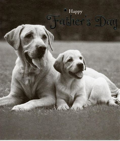Father's day in the uk is observed on the third sunday of june, just as it is in the us. Cute Dogs Happy Father's Day Card   Cards