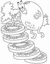 Kiwi Coloring Fruit sketch template
