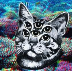 trippy cat image gallery trippy cat