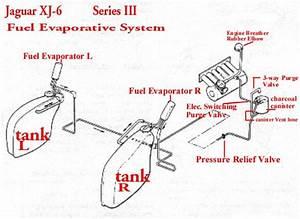 Fuel Leak Xj6 Series 3 - Page 2 - Jaguar Forums