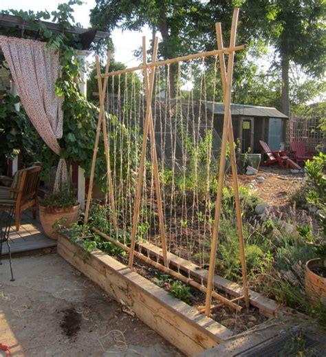 vegetable garden trellis 2013 root simple