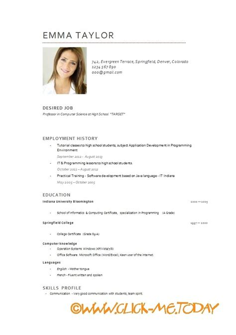 Curriculum Vitae Exle Doc by Cv Exle Sle Customer Service Resume Resume Template Resume Builder