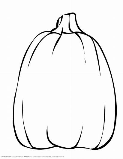 Pumpkin Tall Clipart Outline Coloring Printable Pages