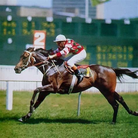 race horse razor sharp