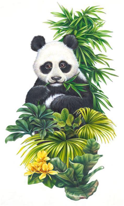 Lori Anzalone Nature Illustration - printing consumer ...