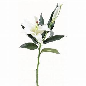 Fleur De Lys Plante : lys casablanca artificiel 70cm fleur sur tige mat riel ~ Melissatoandfro.com Idées de Décoration