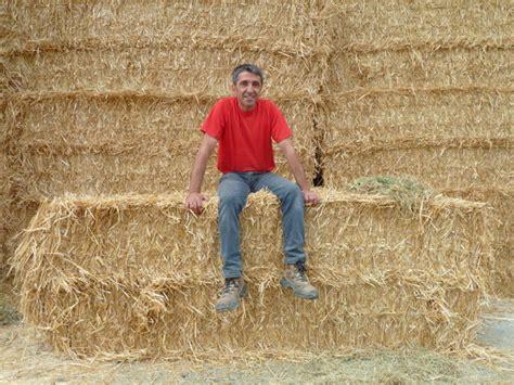 chambre d agriculture maine et loire crise des agriculteurs quand éleveurs et distributeurs se
