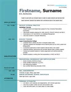the best exle of resume format best way to write a curriculum vitae cv in nigeria news flash ng