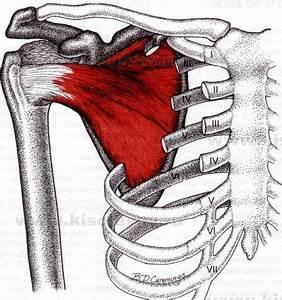 Боли в плечевом суставе диагноз лечение