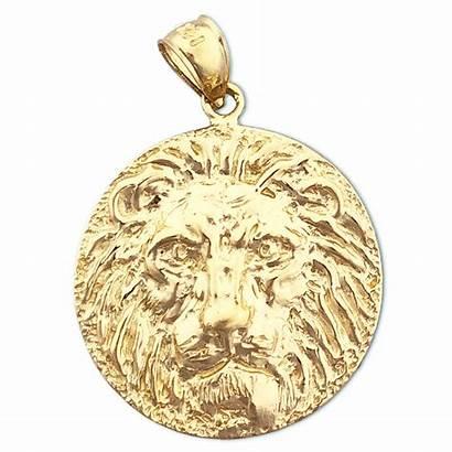Lion Gold Medallion Pendant Head Charm 14k