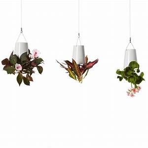 Boskke Sky Planter : boskke sky planter ceramic small boskke touch of modern ~ Orissabook.com Haus und Dekorationen