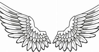 Wing Clip Nu