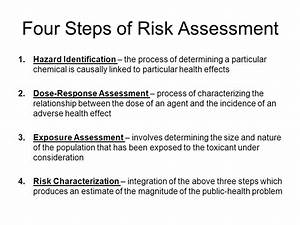 Introduction to Risk Assessment - ppt video online download