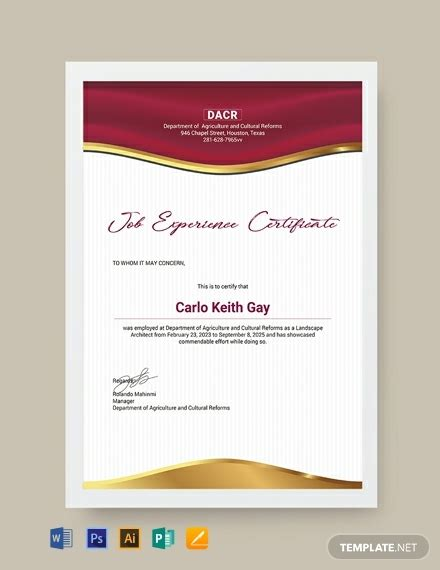 job experience certificate template word psd