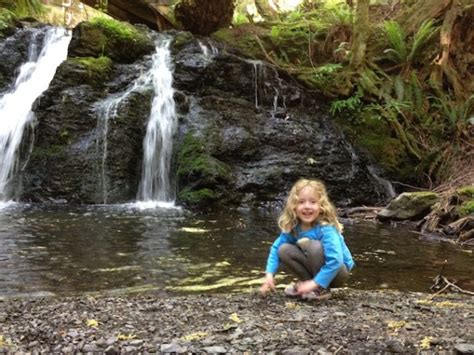 5 spectacular family friendly waterfall hikes in the sf 836 | waterfall hike moran state park e1467086823625