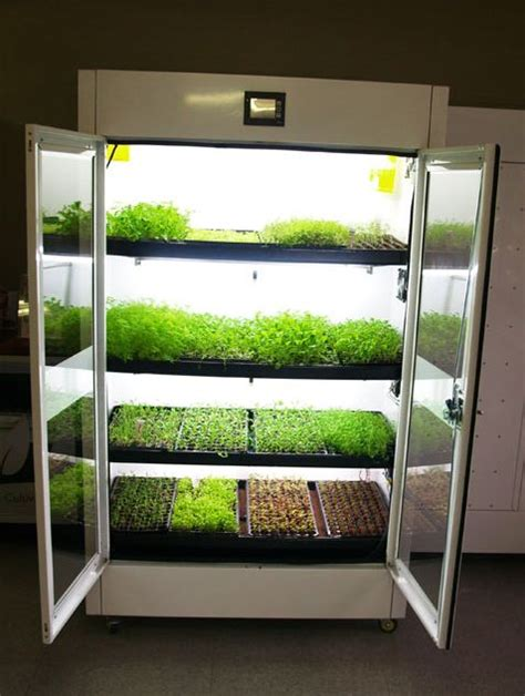 the commercial cultivator hydroponic kitchen garden