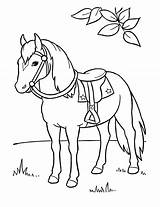 Coloring Horse Printable Horses Sheets Animals Pony Animal sketch template