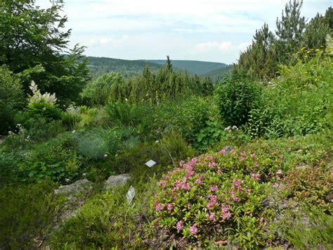 Botanischer Garten Schellerhau by Nsg Wei 223 Eritzwiesen