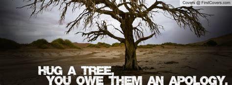 hug  tree quotes quotesgram