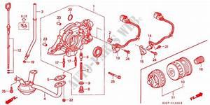 Oil Pump  Oil Strainer  Sohc  Sohc Vtec  For Honda Cars
