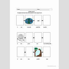 Food Chain Worksheet  Free Esl Printable Worksheets Made By Teachers
