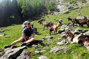 Gps Uhr Wandern Test : die suunto ambit3 peak sapphire hr gps uhr im test ~ Kayakingforconservation.com Haus und Dekorationen
