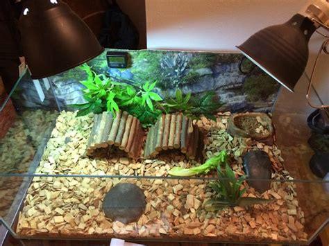 photo autresaccessoires accessoires terrarium tortue de