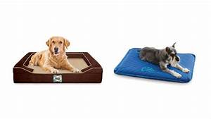 7 Best Cooling Dog Beds  Your Easy Buying Guide  2019