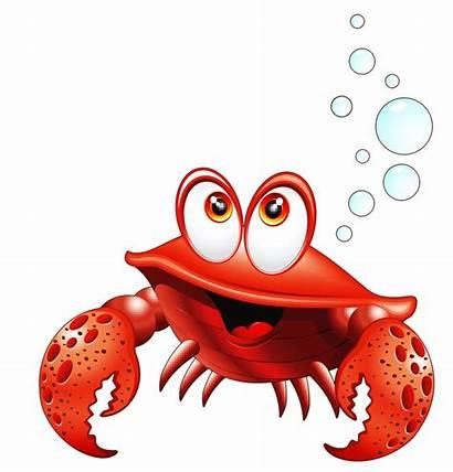 Crab Clipart Ocean Sea Cartoon Animals Crabs