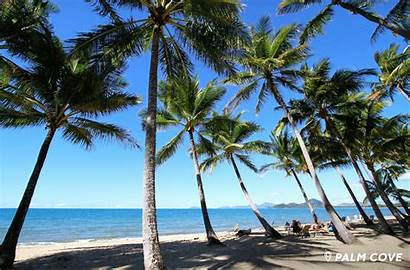 Tropical Beaches Paradise Sydney Cairns Hotel Must
