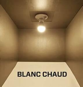 Quelle Ampoule Led Choisir : quelle ampoule led choisir blanc chaud ou blanc froid magnet montr al ~ Melissatoandfro.com Idées de Décoration