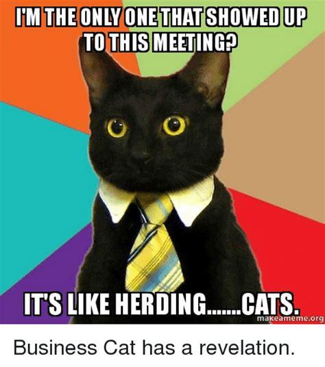 Herding Cats Meme - 25 best memes about herding cats herding cats memes