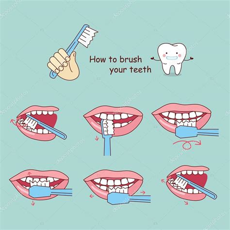 how to how to brush your teeth stock vector 169 etoileark 125695816