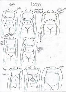 Aprenda A Desenhar  2  Corpo Humano
