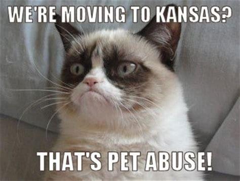 Kansas Meme - coloradoguy com friendship board kansas memes