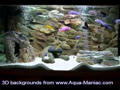 aquarium decor de fond aquarium decoration from aqua maniac showing the best 3d backgrounds installed in customers