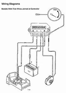 Mercathode Kit  98869a14