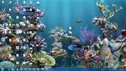 Aquarium Animated 3d Desktop Moving Fish Wallpapers