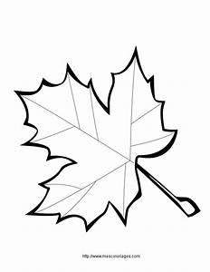 Feuilles D Automne à Imprimer : coloriage de feuilles d automne feuille de diddl a imprimer az coloriage ~ Nature-et-papiers.com Idées de Décoration