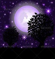 Beautiful Night Sky Scene
