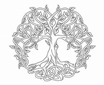 Mandala Celtic Coloring Pages Tree Colouring Level