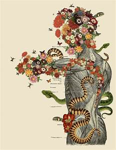 Travis Bedel U0026 39 S Anatomical Collages Made From Vintage