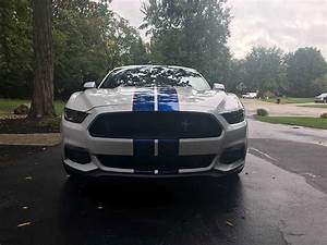 6th Gen White 2015 Ford Mustang Gt Premium Manual For Sale