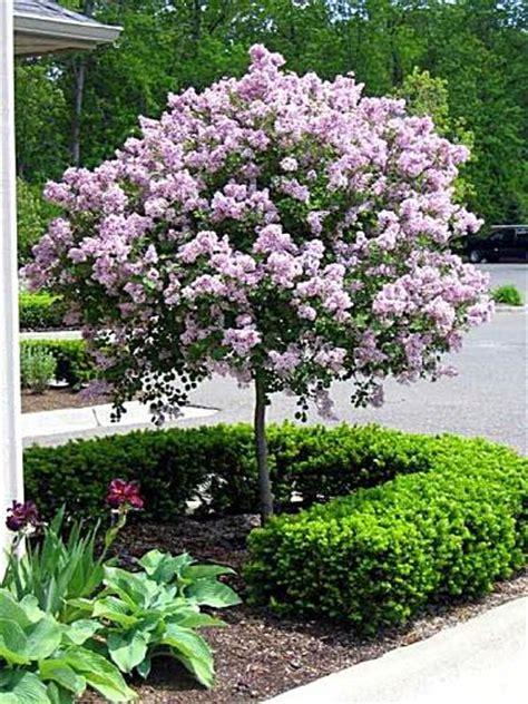 Sherwood Forest Garden Center In Rochester, Mi 48306